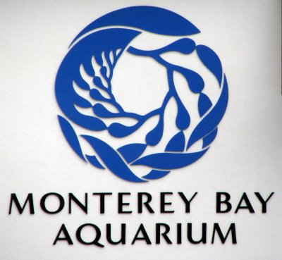 photograph about Monterey Bay Aquarium Printable Coupon titled Monterey bay aquarium coupon codes 2018 / Remaining second push