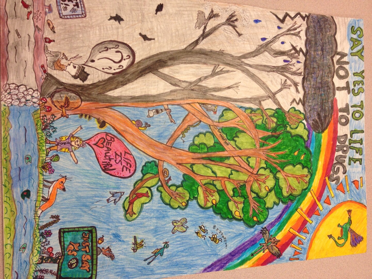 Baymonte Student Awarded Red Ribbon Week Grand Prize