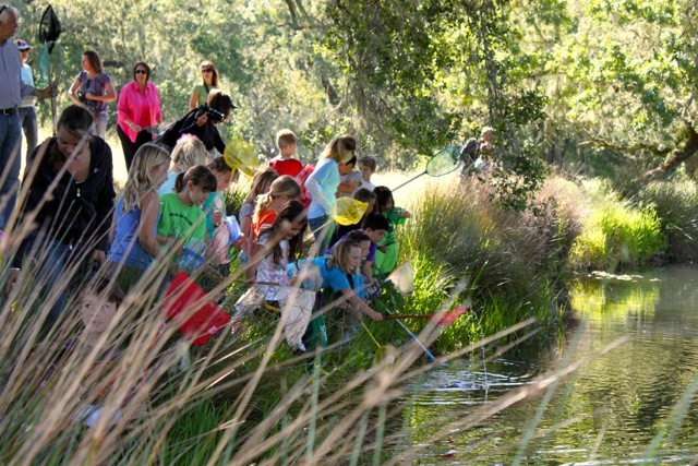 Science Comes to Life for Baymonte Second Graders at the Pond