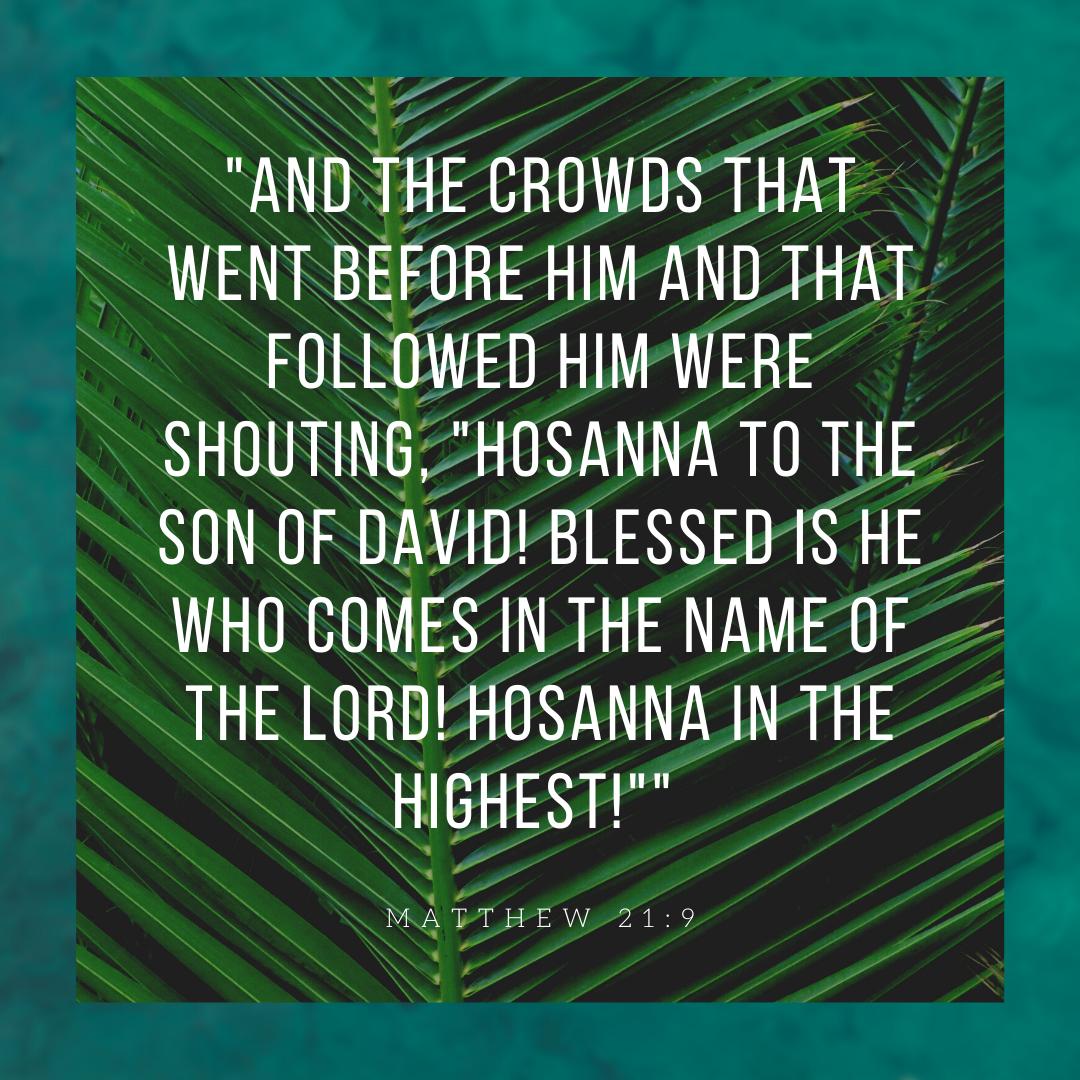 Happy Palm Sunday and Holy Week!